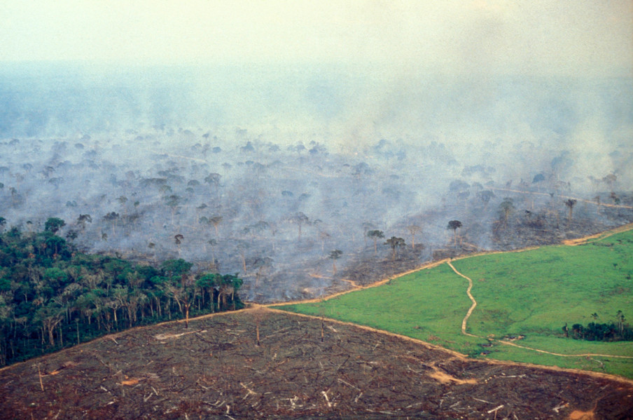 Ontbossing van het Amazonegebied in Brazilië. Foto: Ricardo Funari/Getty Images