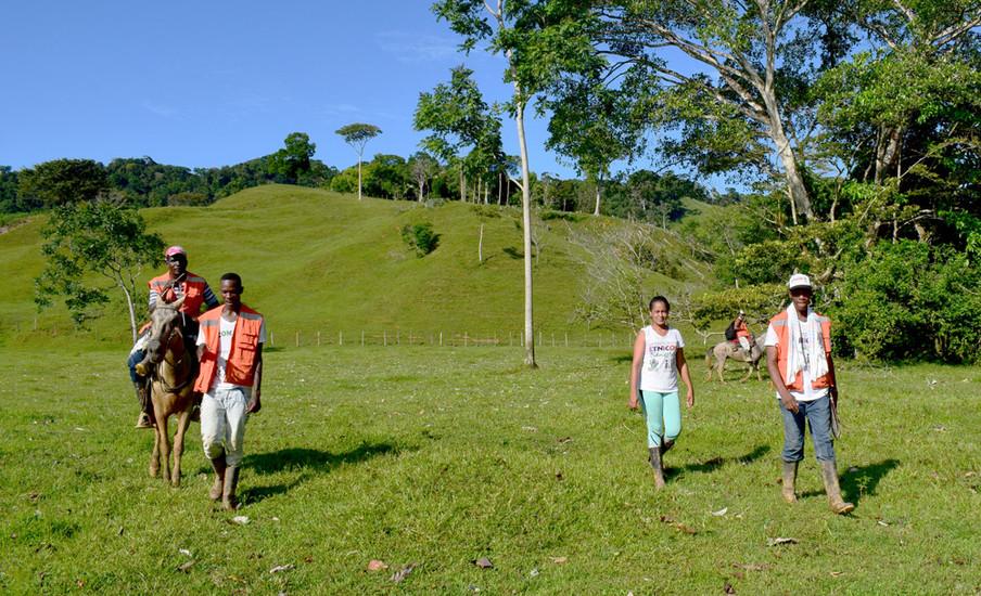 Caicedo en zijn team doorkruisen een stuk weidegrond op weg naar hun bos. Foto: Bart Crezee