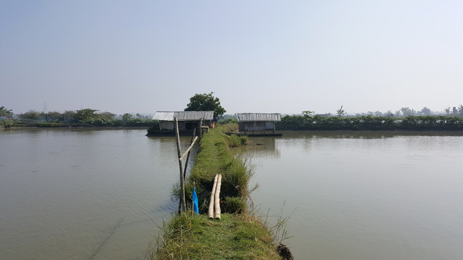 Garnalenboeren in de buurt van Khulna, ten zuiden van Dhaka.
