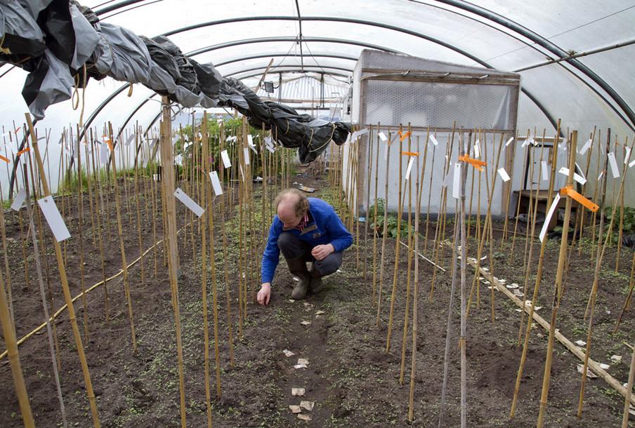 Wetenschapper Hendrik Rietman in zijn kas in Groningen. Uit het project SOY van Annette Behrens.