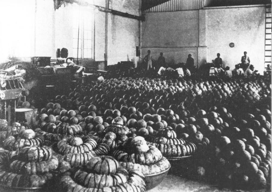 Het ballenmagazijn van de nieuwe opiumfabriek in Weltevreden, Batavia. Hier werd de schors gespleten en de ruwe opium uit de bal gehaald.