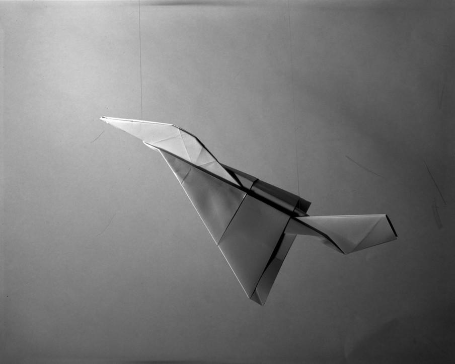 Atlas Carver, uit de serie Paper Planes van Sjoerd Knibbeler