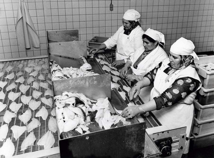 Het 'uitleggen' van visfilets door gastarbeiders, Nederland, 1978. Foto: Spaarnestad / HH