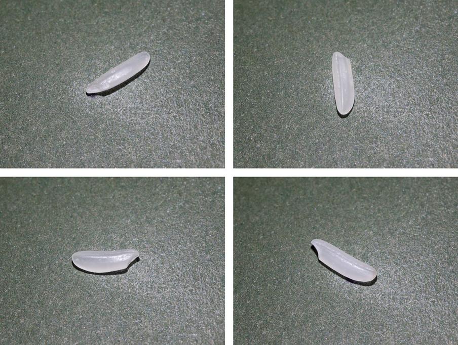 Uit de serie '100 grams of rice' door Ola Lanko