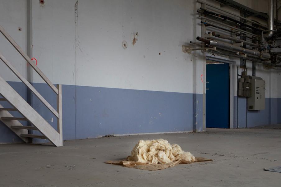 Hennepvezels uit de testinstallatie liggen te drogen in de droogruimte. Foto: Anoek Steketee (voor De Correspondent)