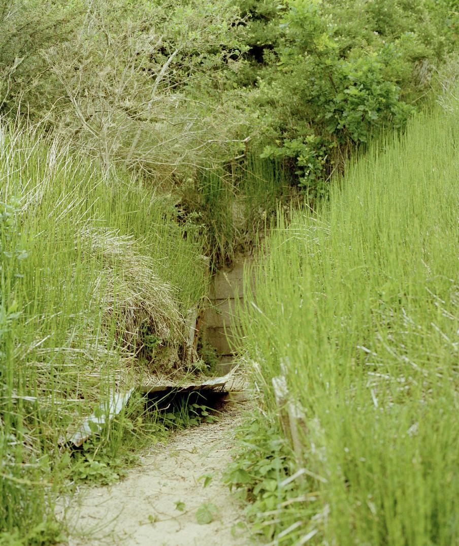 De bunker in de duinen. Foto: Eva Borsboom (voor De Correspondent)