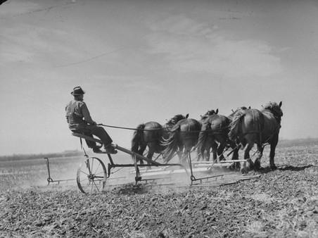 Verenigde Staten, 1942. Foto: Eric Schaal / Getty Images