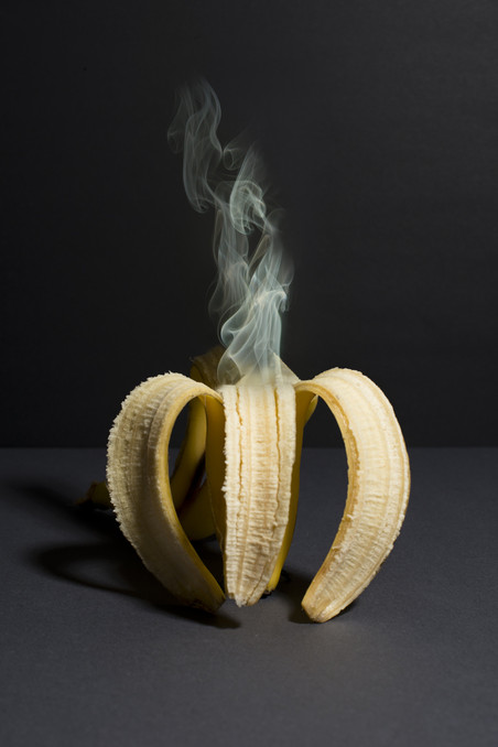 Uit het project 'Fusarium – a tribute to the banana'. Foto's: Eva Meijer