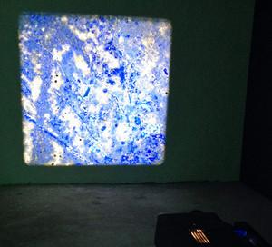 Pieter Paul Pothoven, Lapis Lazuli fron Serr-i-Sang, 2012-2015.