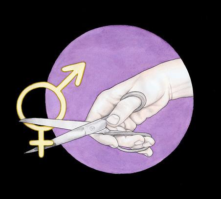 'Gendercut'. Illustratie: Hilde Atalanta (voor De Correspondent)
