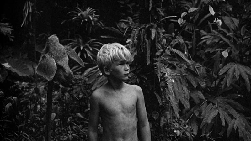 Foto's: Ronald Grant Archive / HH